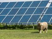 solar farm 2b