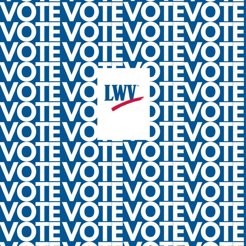 vote IMG_1713