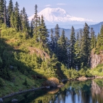 2019 Legislative Wrap: Forests and Rivers
